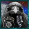 Crow 777 Radio